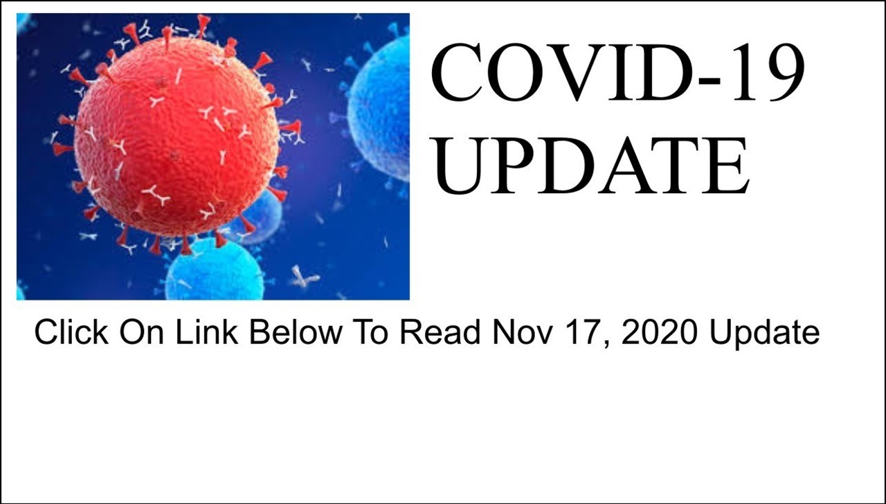 IMAGE OF COVID WITH LINK TO NOV 17 UPDATE