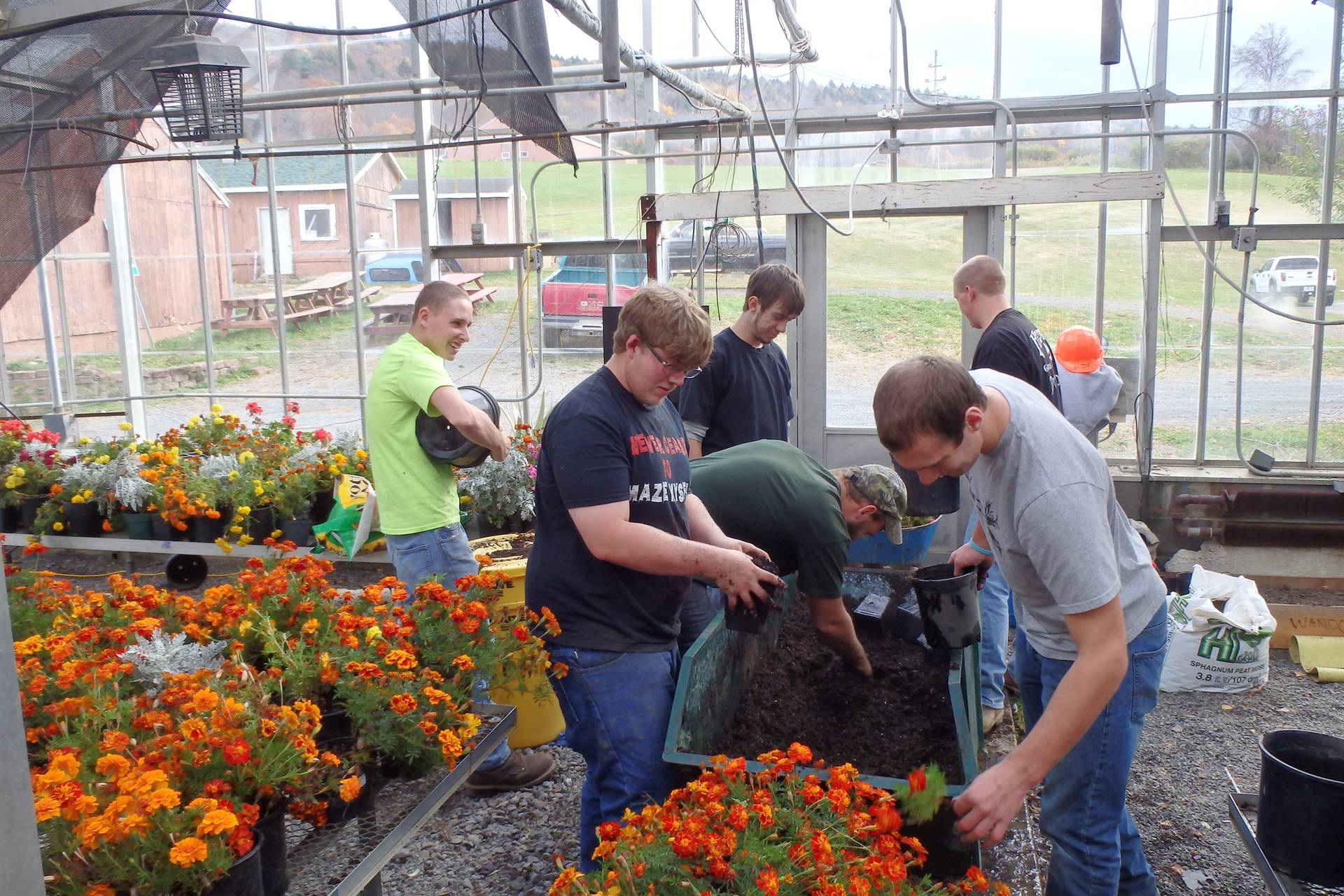 Conservation students planting flowers
