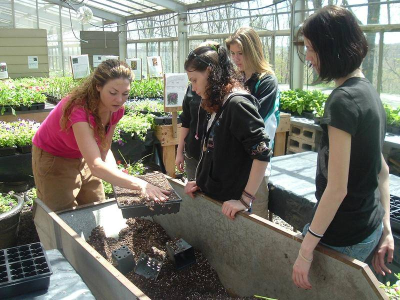 Students participating in horticulture project